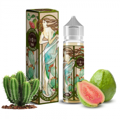 Curieux 1900 Goyave Cactus 50ML 24,90€